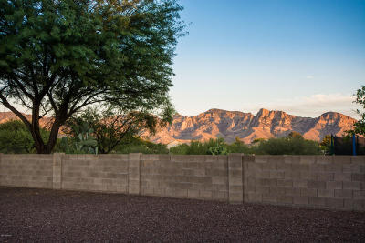 Pima County Single Family Home For Sale: 13006 N Eagleview Drive