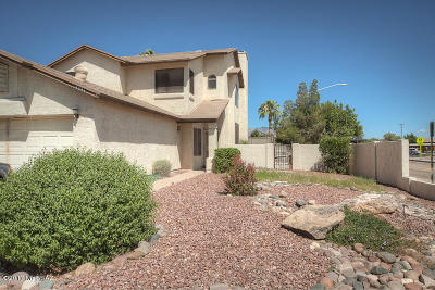 Pima County Single Family Home For Sale: 5091 W Pheasant Street
