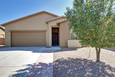 Marana Single Family Home For Sale: 12948 N Sabal Palm Way