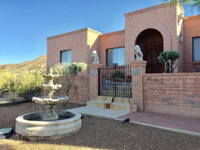 Tucson Single Family Home For Sale: 4041 W Anklam Road