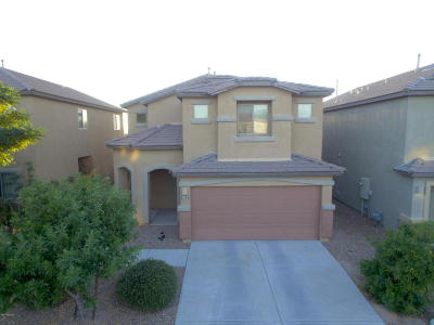 Pima County Single Family Home For Sale: 6580 S Chinese Lanterns Drive S