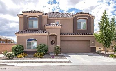 Pima County Single Family Home For Sale: 12414 E Calle Riobamba