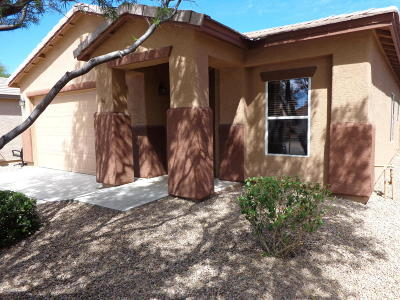 Pima County Single Family Home For Sale: 3462 W Sagebrush Hills Court