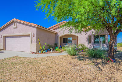 Pima County, Pinal County Single Family Home For Sale: 1045 N Davidson Canyon Road