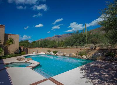 Tucson Single Family Home For Sale: 7621 E Placita Del Pajaro