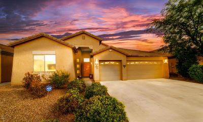 Pima County Single Family Home For Sale: 7033 S Cottontail Run Avenue