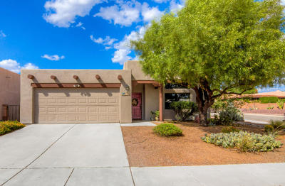 Pima County Single Family Home For Sale: 3182 W Orbison Street