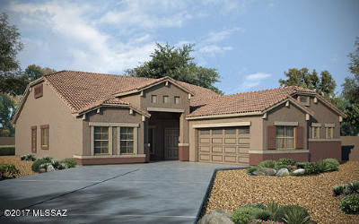 Marana Single Family Home For Sale: 9685 N Hebden Way