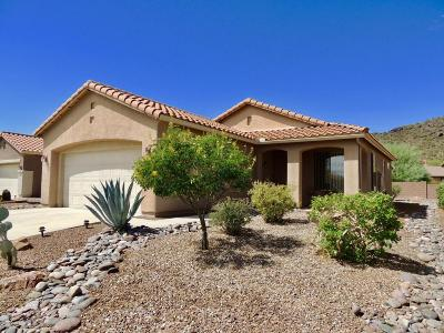 Continental Ranch Sunflower Single Family Home For Sale: 9447 N Whispering Shadows Way