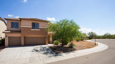 Sahuarita Single Family Home For Sale: 14453 S Via Del Trono