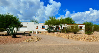 Tucson Single Family Home For Sale: 5171 N Stonehouse Place