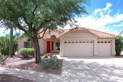 Tucson Single Family Home For Sale: 7686 E Camino Amistoso