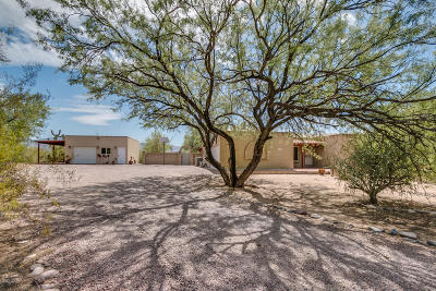 Tucson Single Family Home For Sale: 11240 E Stetson Place