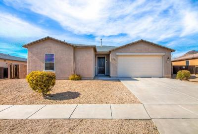Tucson Single Family Home For Sale: 3602 S Double Echo Road