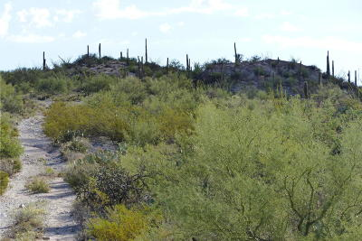 Tucson Residential Lots & Land For Sale: 14260 N Hawk Canyon Trail