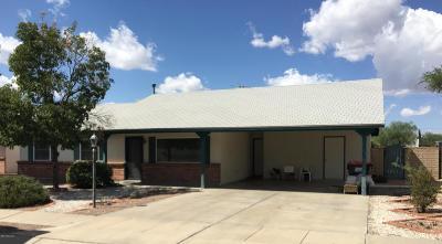 Tucson Single Family Home For Sale: 6291 N Cinnamon Drive