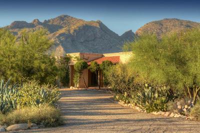 Tucson Single Family Home For Sale: 2111 E Camino La Zorrela