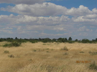 Elfrida Residential Lots & Land For Sale: W Whitewater School Road