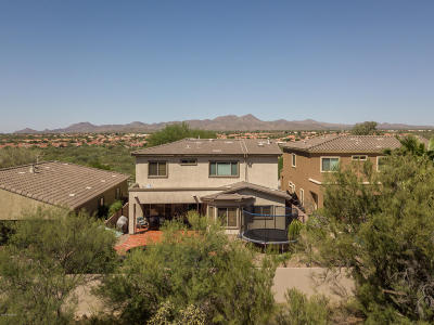 Tucson Single Family Home For Sale: 13922 N Big Wash Overlook Place