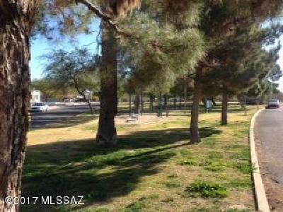 Tucson Single Family Home For Sale: 1006 E Mitchell Street E
