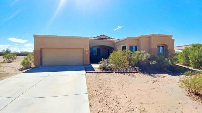 Marana Single Family Home For Sale: 10065 N Avra Vista Drive