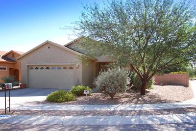 Tucson Single Family Home For Sale: 3259 S Lakeside Ridge Loop