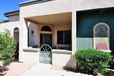 Tucson Single Family Home For Sale: 2390 W Via Di Silvio