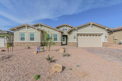Marana Single Family Home For Sale: 14147 N Hidden Arroyo Ps Pass N