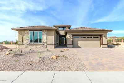 Single Family Home For Sale: 14153 N Golden Barrel Pass N