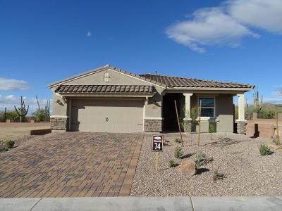 Marana Single Family Home For Sale: 7686 W Buckeye Path Pass