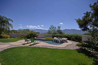 Oro Valley Single Family Home Active Contingent: 12590 N Piping Rock Road