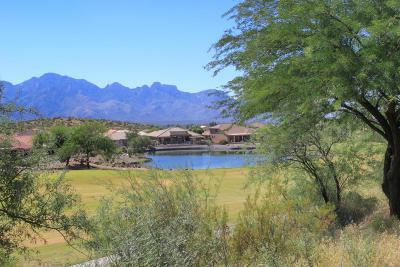 Tucson Single Family Home For Sale: 37809 S Skyline Drive
