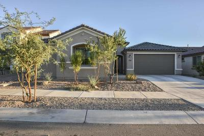 Single Family Home For Sale: 11030 E Lone Pine Place