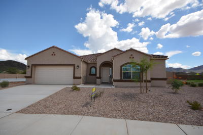 Marana Single Family Home For Sale: 8931 W Saguaro Skies Road