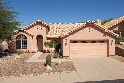 Pima County Single Family Home For Sale: 1666 W Sunridge Drive