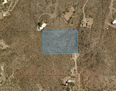 Residential Lots & Land For Sale: E Calle Catalina