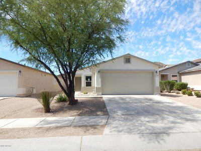 Tucson Single Family Home For Sale: 7374 S Messala Court