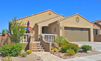 Vail Single Family Home Active Contingent: 13993 E Barouche Drive