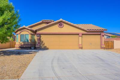 Pima County Single Family Home For Sale: 13960 S Camino El Becerro