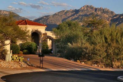Oro Valley Single Family Home For Sale: 13542 N Placita Montanas De Oro