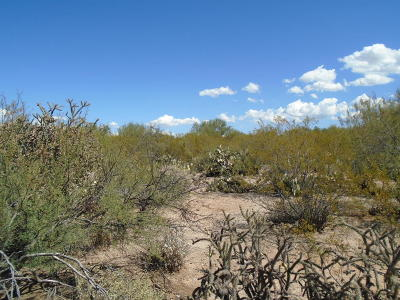 Residential Lots & Land For Sale: E Pinal Vista