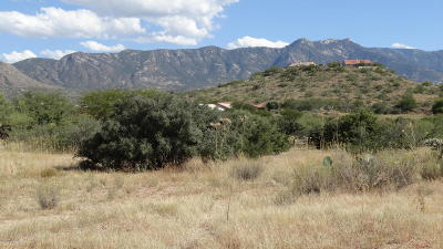 Residential Lots & Land For Sale: S Calle Diamante