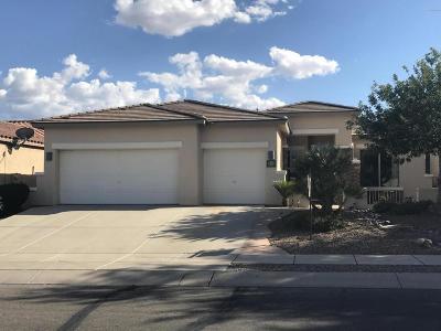 Pima County Single Family Home For Sale: 32 E Camino Rancho Cielo