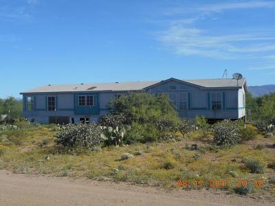 Corona De Tucson, Green Valley, Marana, Mt. Lemmon, Oro Valley, South Tucson, Tucson, Vail Manufactured Home For Sale: 13991 E Sundown Boulevard