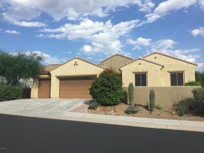Marana Single Family Home Active Contingent: 12410 N Golden Mirror Drive