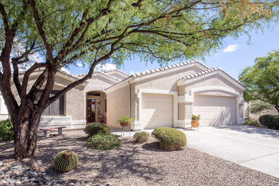 Single Family Home Active Contingent: 363 W Sacaton Canyon Drive