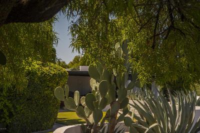 Tucson Condo Active Contingent: 641 W Las Lomitas Road