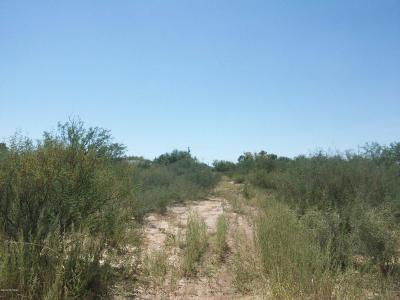 Tucson Residential Lots & Land For Sale: 4953 S Sherman Avenue