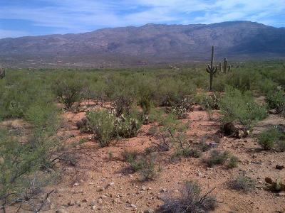 Tucson Residential Lots & Land For Sale: Rolling Tumbleweed