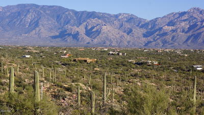 Residential Lots & Land For Sale: 14188 N Gecko Canyon Trail